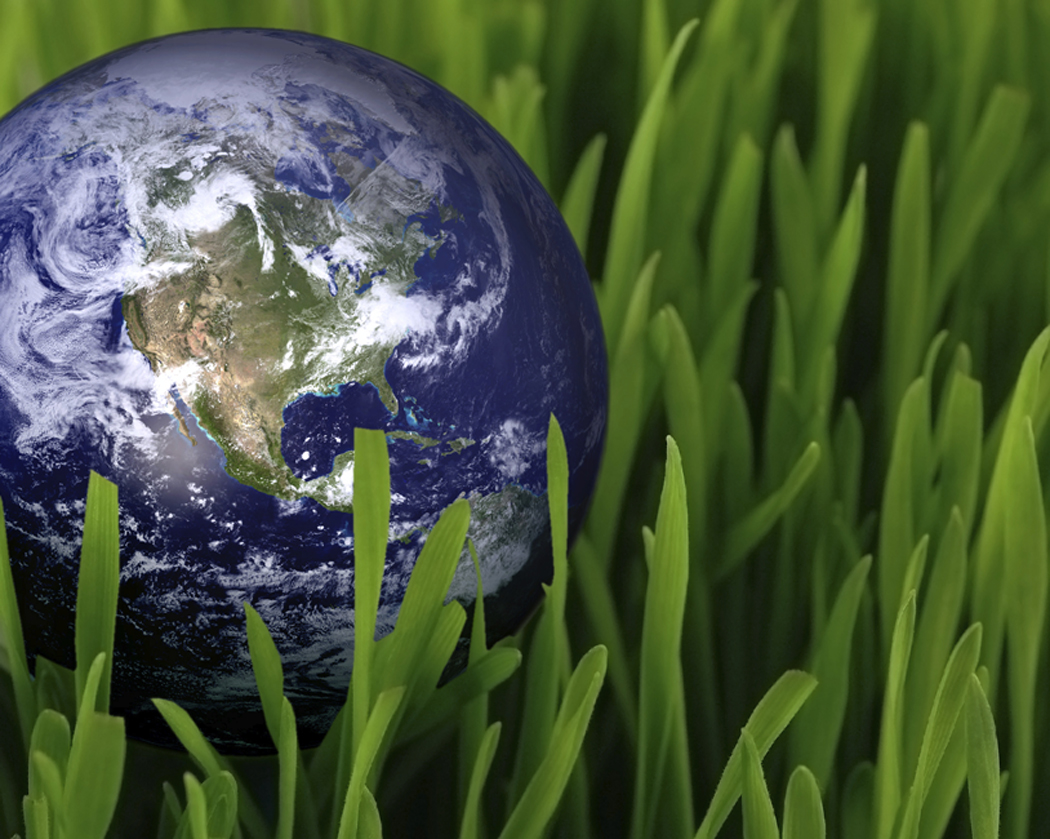 Image of the earth nestled in green grass.